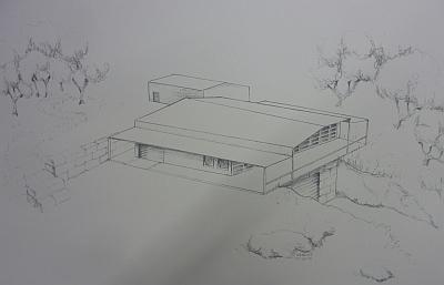 Hawk's Shadow - drawing