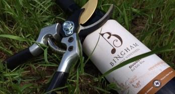 Bingham Family Vineyards Dugout
