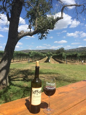 Perissos table and vineyards by Laura Arnold