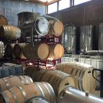 Hill Country Road Trip: 16 wineries in 4 Days