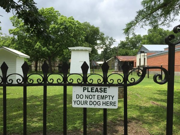 Please Don't Empty Your Dogs