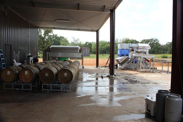 1851 Vineyards outside