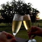 Texas Wine Country Fall 2016 – Part 1