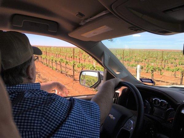 Touring Diamante Doble Vineyards with Jet Wilmeth