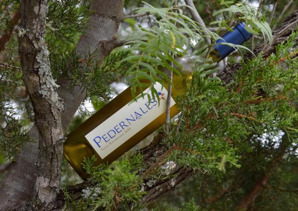 Pedernales Cellars Texas Roussanne bottle