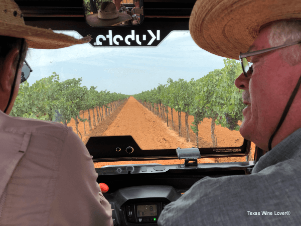 Riding through Newsom Vineyards