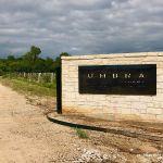 Umbra Winery at La Buena Vida Vineyards held a Special Event Recently
