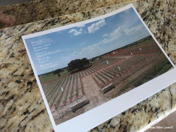 7 Creeks Vineyard vineyard map