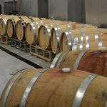 A Barrel Experience at Ron Yates Wines