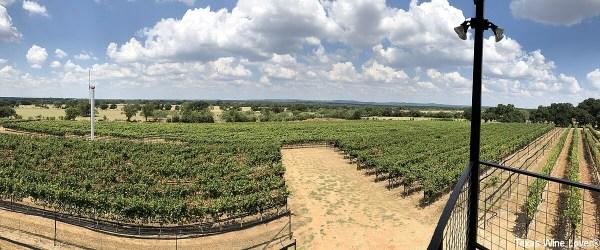 William Chris Vineyards vineyard