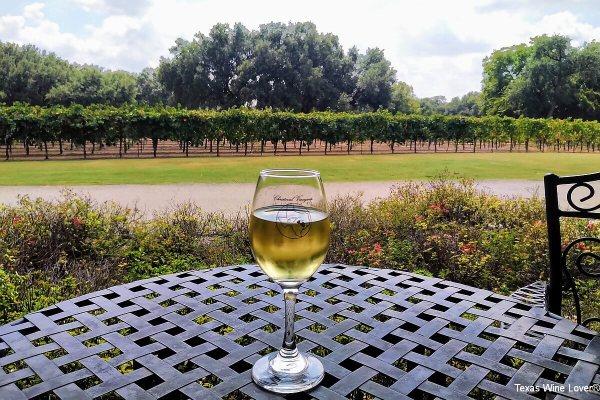 Vineyard at Christoval Vineyards