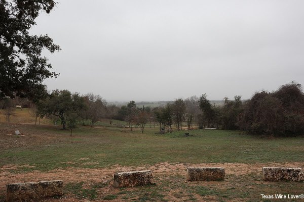 Texas Heritage Vineyards view