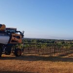 2020 Harvest Update from Texas Fine Wine
