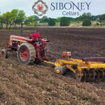 Siboney Cellars – Vineyard Planting and Spring Release Event Preview