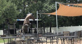Wild Stallion Vineyards horse statue