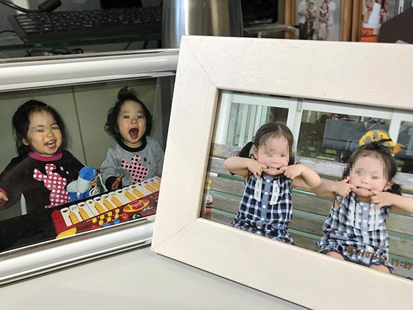 麗ちゃんと同い年頃のレッサーパンダ家の双子。この先、どの様に成長していくのでしょう。