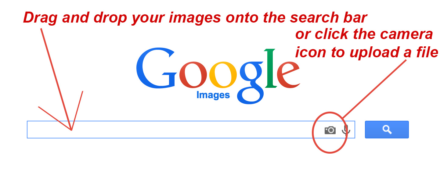 Images Stolen From A Google Image Search