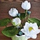 Белые лилии. Крючком. Схема