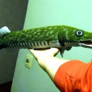 Вязаная спицами рыба-щука. Описание