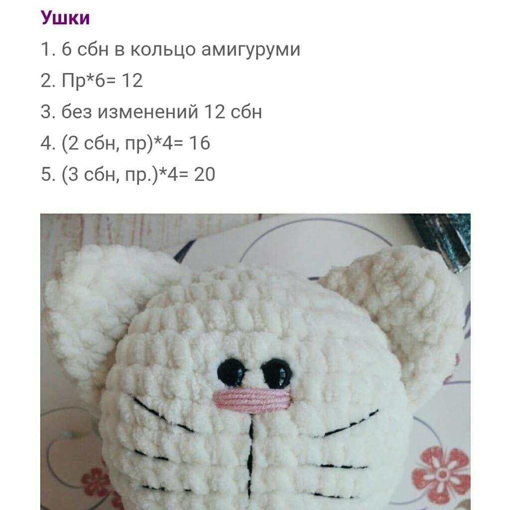 Котенок в шапочке и свитере