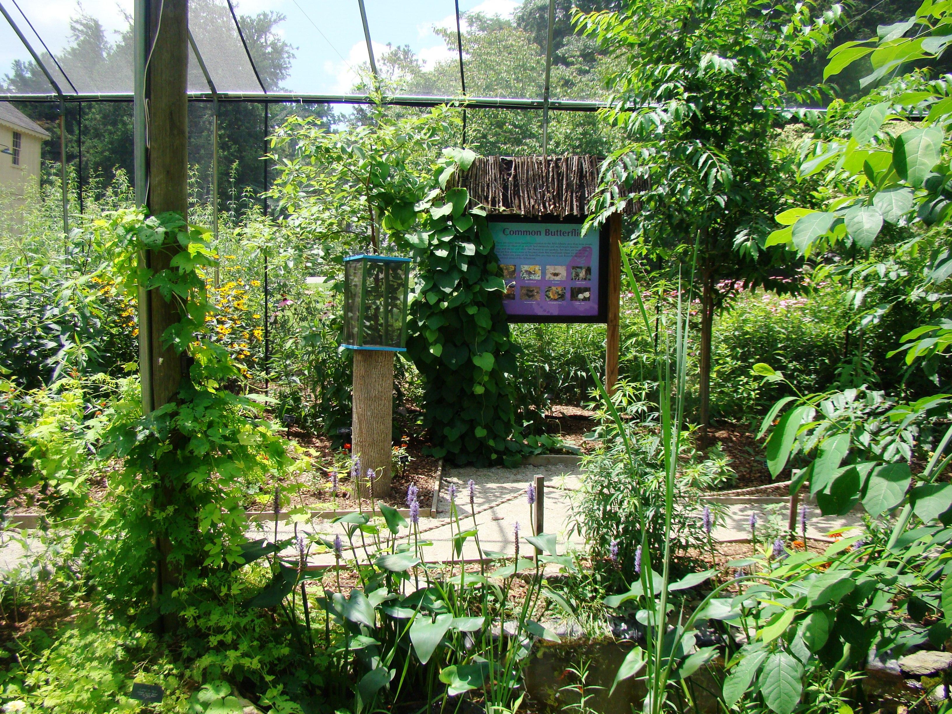 Butterfly House Tyler Arboretum