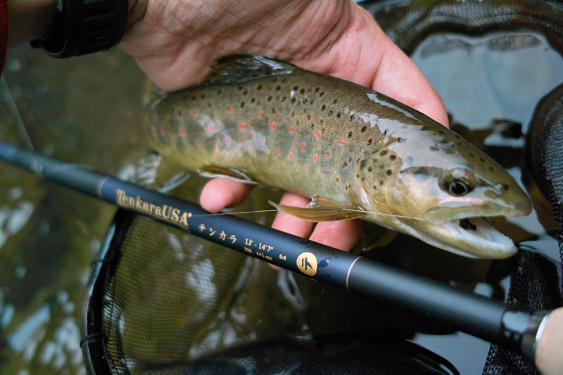 learn how Tenkara USA founder Daniel Galhardo managed his startup to become the largest brand of tenkara fly rods in the world in this podcast interview