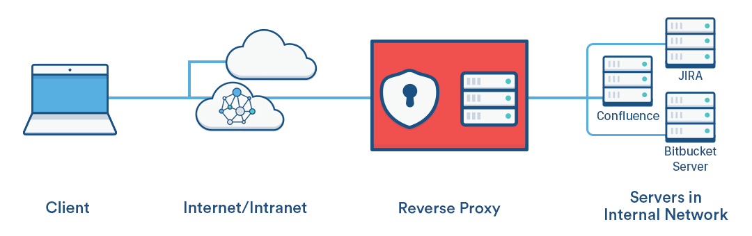 The Perfect Reverse Proxy (NGINX, SSL, WebUI Management)