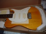 Samick Telecaster (before)