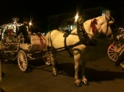 02 LMU Holiday Carriage Rides