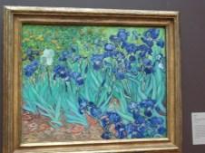 23 Irises by Van Gogh