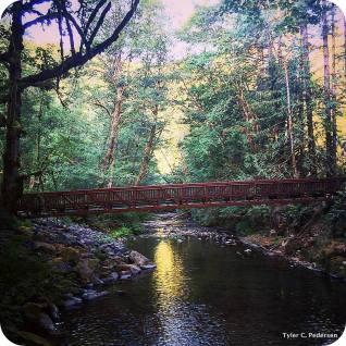 1-Whittaker Creek_1