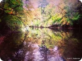 Siuslaw River Above Esmond Creek