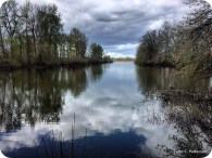 Snag Boat Bend Reflection