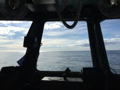 no land in sight, but headed for home