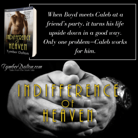 Now Available: Indifference of Heaven (Suncoast Society)