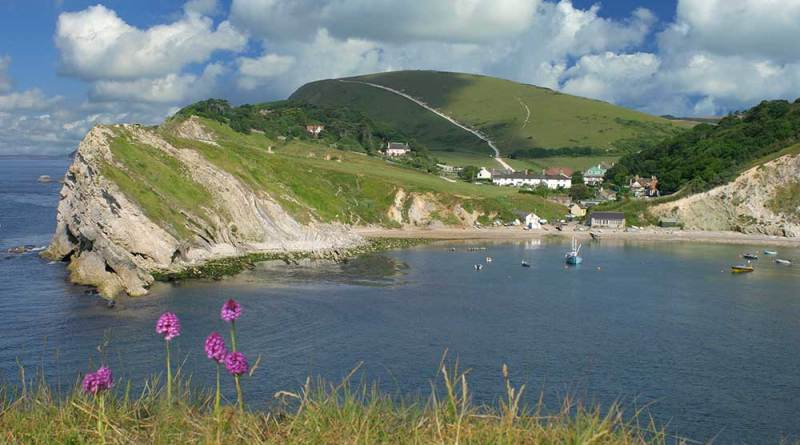 View of Lulworth Cove in the summer