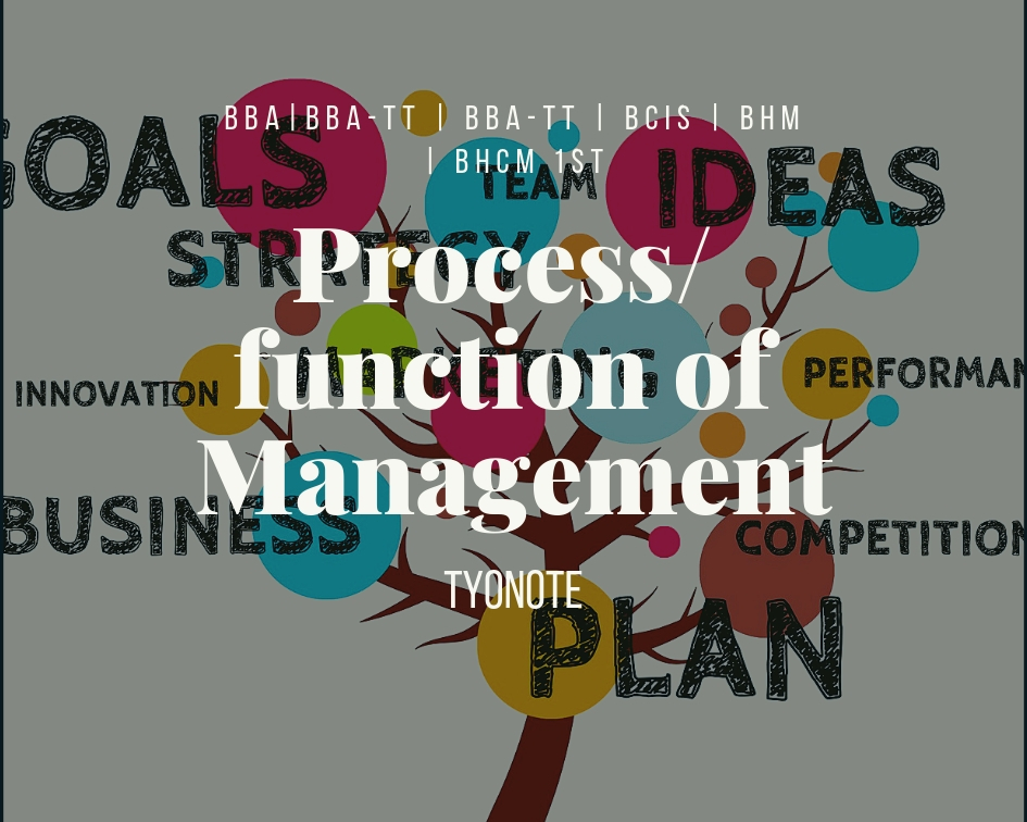 Processes principle management