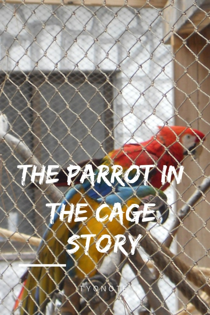 The Parrot in the Cage four levels