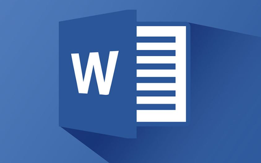word processor ms word