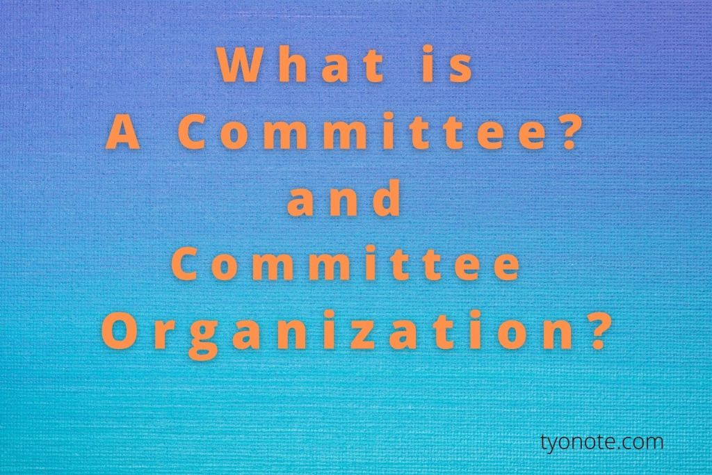 what is a committee organization