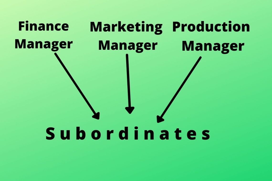 functional organization structure