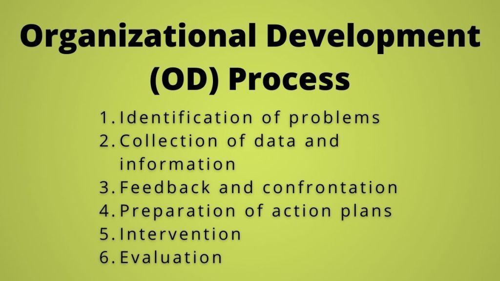 organizational development process
