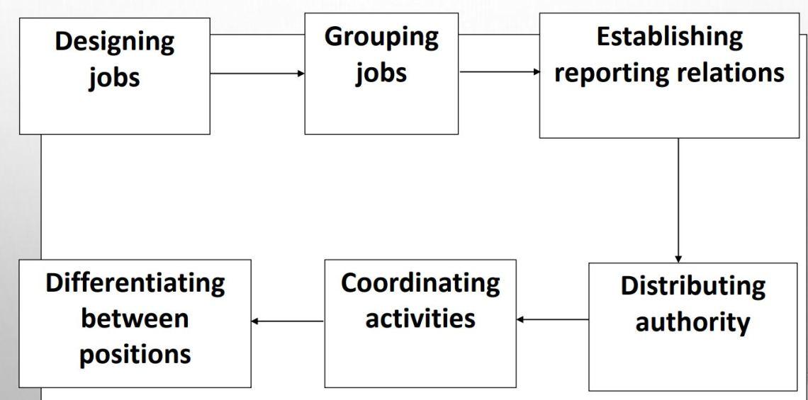 organizational structure designing process
