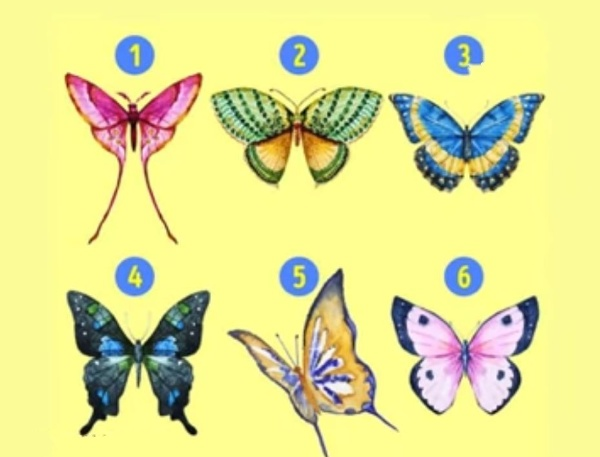 6 butterflies personality test