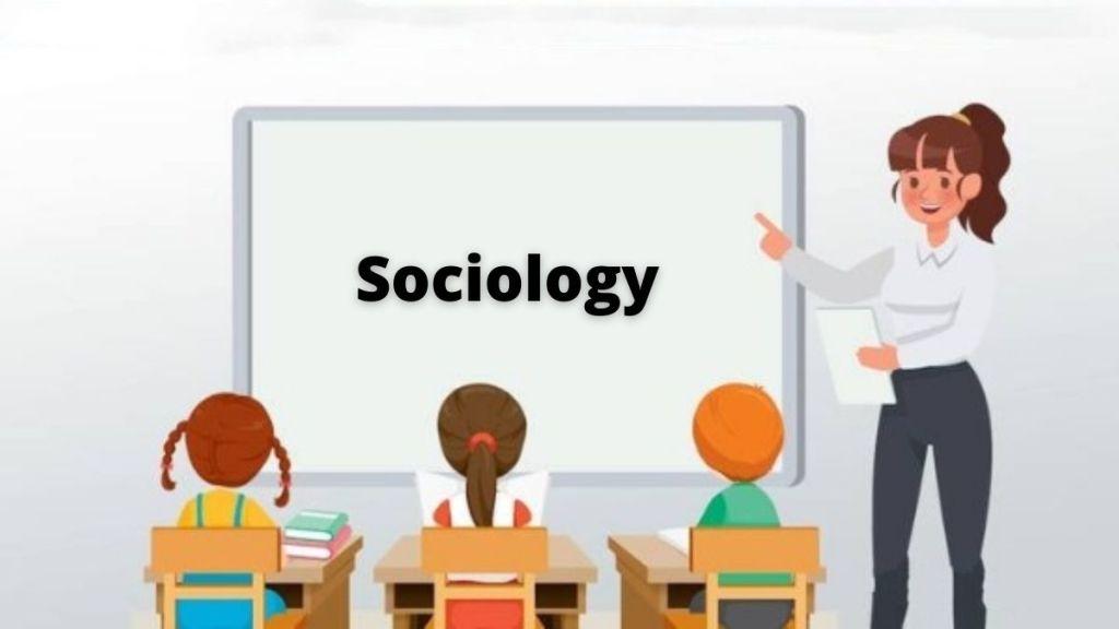 emergence of sociology