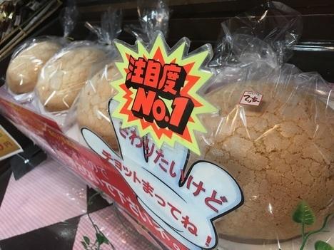 18切符大食い旅多賀SA上りメガ盛りメロンパン陳列