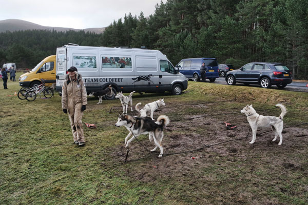 Aviemore Sled Dog Rally