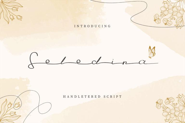 Seledina - Elegant Hand Lettered Script