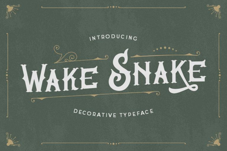 Wake Snake - Decorative Vintage Typeface