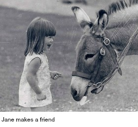jane-w-donkey-280x-w-caption